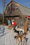 Sports-Dogsled 75-22-00285
