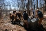 Maple Sugaring 30-20-11928