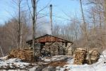 Maple Sugaring 30-20-11950