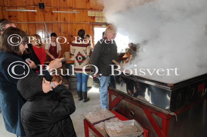 Maple Sugaring 30-20-11994