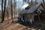 Maple Sugaring 30-20-11999
